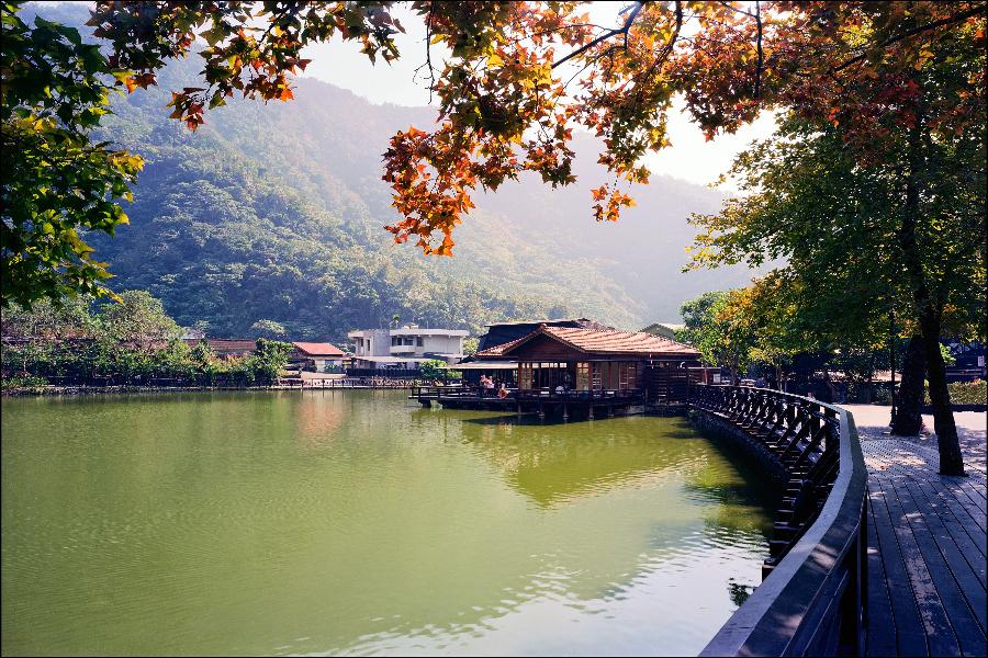 日月潭紅茶莊園+微熱山丘 二日遊