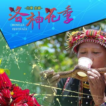 2015 「百步之鄉」金峰鄉_洛神花季