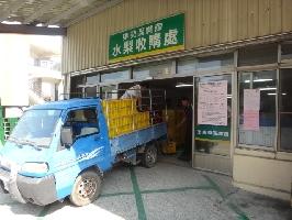 東勢區農會-水梨收購處 店家其他3
