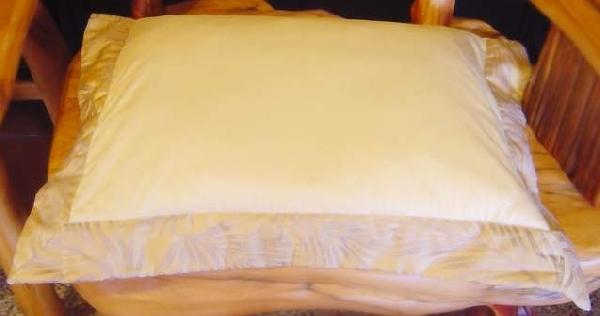 檜木珠枕頭 封面圖片
