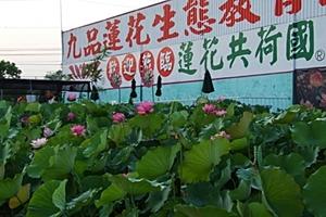 九品蓮花生態教育園區
