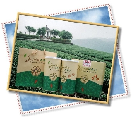 素馨茶 封面圖片