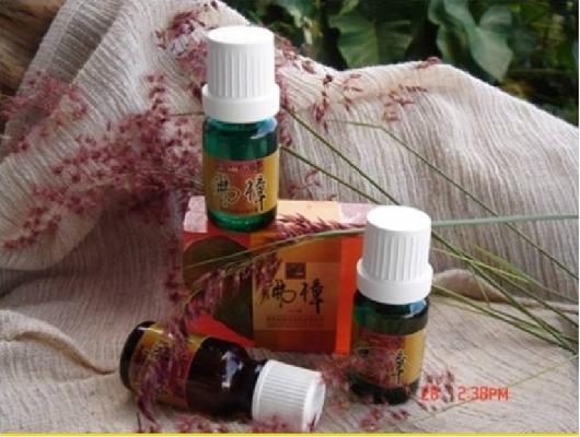 植物精油---台灣牛樟 封面圖片