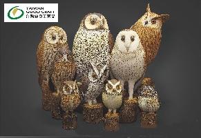 擬真版-9隻貓頭鷹全圖 其他圖片1