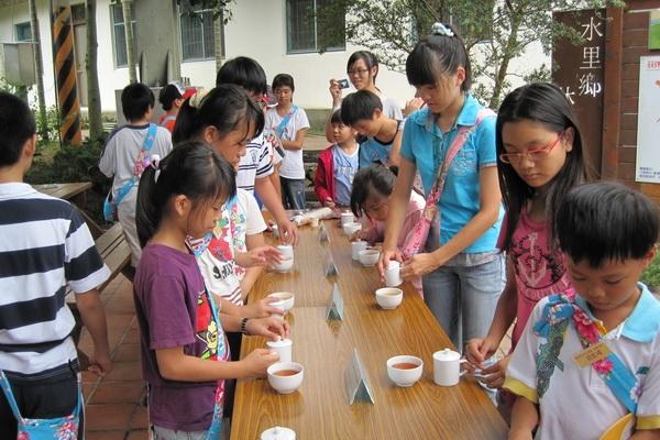 台灣各類茶的介紹同時品嚐6種不同類的茶 封面圖片