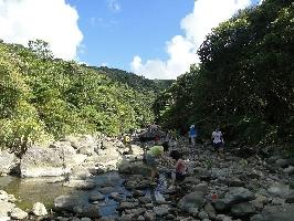 阿里磅溪是天然的野溪,適合作底棲生物觀察及戲水。 其他圖片2