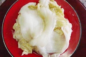 秀山酸白菜