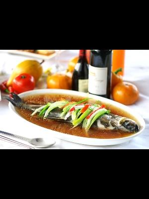 總統魚 其他圖片2