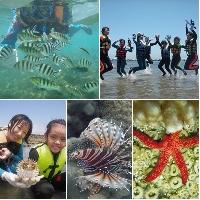 漁人休閒澎湖生態遊