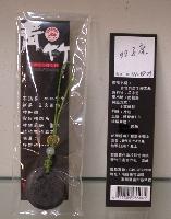 青竹竹炭手機吊飾