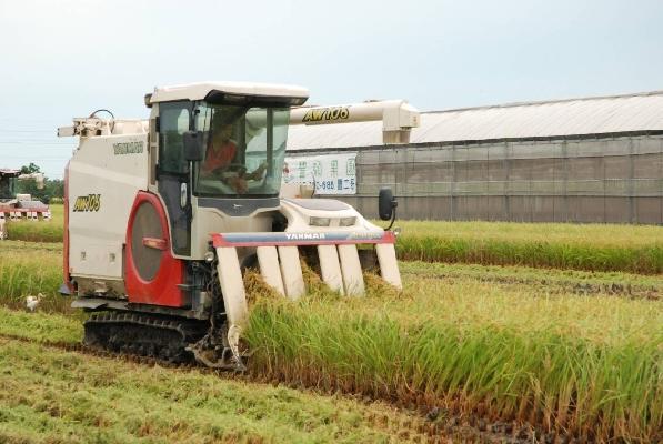 神農御食米 其他圖片1