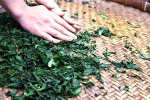 手感紅茶DIY