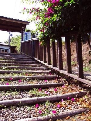 大門階梯 其他圖片3