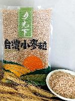月光下台灣小麥粒