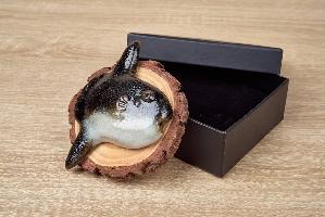 曼波陶魚松木裝置